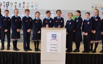 New School Committees