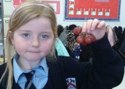 Funky Fruit Friday!