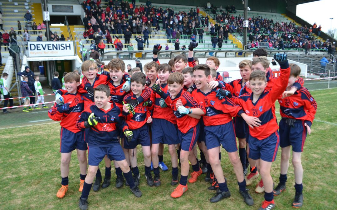 St. Paul's Boys win the Meath Primary School's Division 1 Shield final!